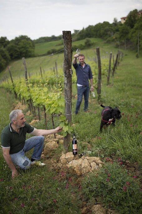 Vino Artigianale Montepulciano Toscana del Podere della bruciata